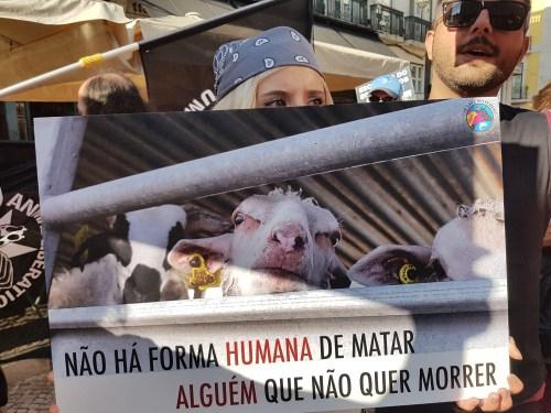 3fafb22bf ACÇÃO DIRECTA – MARCHA OFICIAL PELOS DIREITOS DOS ANIMAIS (LISBOA, 25 DE  AGOSTO DE 2018)